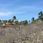 View of Villa del Faro from the beach below. An oasis!