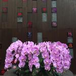 AMOY by Far East Hospitality Foto