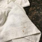 Stained towels, not even bath towels they feel and look like bar towels. Cigarette burn in a smo