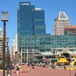 Window View - Hampton Inn & Suites Baltimore Inner Harbor Photo