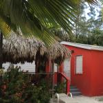 Cute little two bedroom cottage with palapa behind the other two-story Canuck cottage
