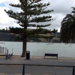 Akaroa harbor, East side of South Island, New Zealand