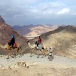 Up Mount Sinai on a cold day, also loving the camels