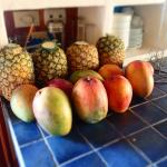 Fresh pineapple and mangoes for our smoothies!