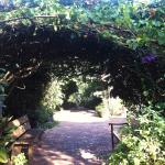 Foto de Sonya's Garden B&B