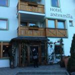 Foto de Hotel Antermoia