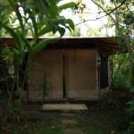 Photo de Pura Vida Retreat & Spa