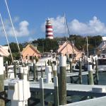 The docks in the Marina are new, as is the entire facility which is pictured in pink behind the