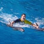 Dolphin Bay - Royal Swim