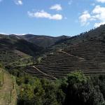 Quinta das Heredias Foto