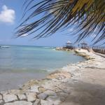 Beach - Hilton Rose Hall Resort & Spa Photo