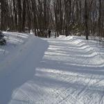 x-country skiing up hill along well-groomed trail