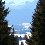 Winterwanderung zur Alpe Beichelstein