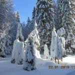 Vue sur les pistes de ski de fond