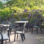 Photo of Hotel Villa Lauri