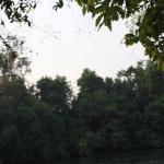 ComSaed River Kwai Resort Photo