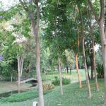Photo de ComSaed River Kwai Resort