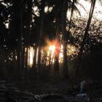 Landscape - Maachli Farmstay Photo