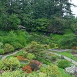 Sunken gardens in old rock quarry