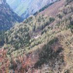 Photo of Rifugio Alpino Revolto