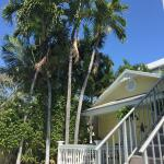 Photo de Avalon Bed and Breakfast