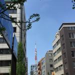 Фотография 1082867