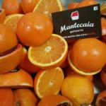 Photo de Mantecaia Gelateria