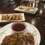 Appetizers: Gyoza, Pork Tonkatsu, Tofu