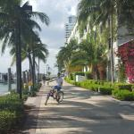 Foto de Miami Beach Bicycle Center