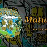 Great Czech beers on tap like Svijany and Matuška