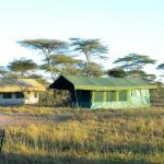 Foto di Ndutu Wildlands Camp