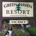 Dog-friendly accommodations