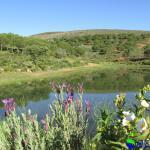 Photo of O Monte do Alhinho