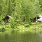 Foto de Cozy Cabins Nature Resort