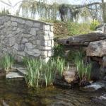 Waterfall/Pond with Koi fish