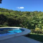 Pool & Jungle View