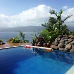 Enjoy our fabulous plunge pool