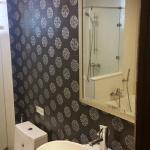 Toilet with bathtub