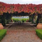 Pergola in Autumn