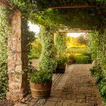 Winery Halls