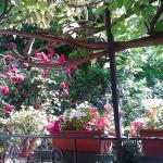 Foto de La Villetta