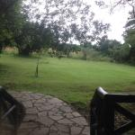 Sarova Mara Game Camp Foto