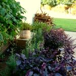 The kitchen garden