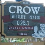 Clinic for the Rehabilitation of Wildlife (CROW) Foto