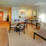 Holiday Inn Express Roswell Foto