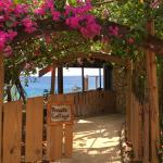 Entrance to Sagittarius Cottage