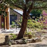 Un jardin vraiment très agréable une piscine paysagère en pleine nature ...