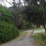 Azienda Agraria Le Crete Agriturismo Foto