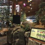 Foto de World Forestry Center