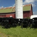 Amish Heartland Tours